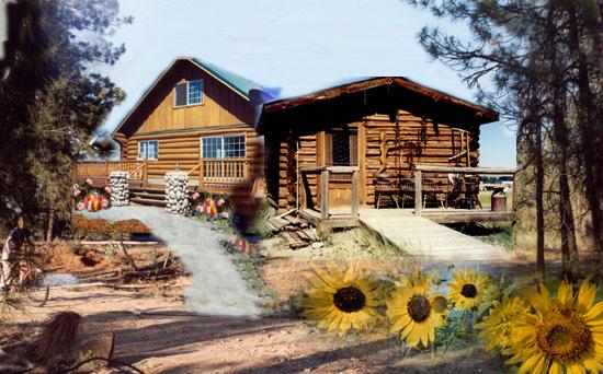 Log Cabin Tv